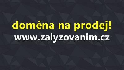 Prodej domény ZaLyzovanim.cz
