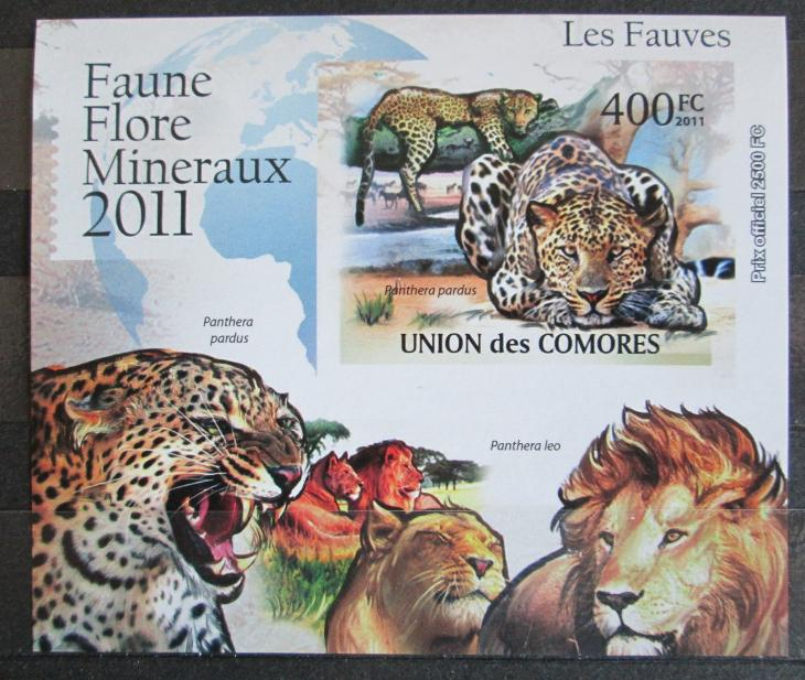 Komory 2011 Kočkovité šelmy neperf. Mi# 3044 B Block 0877 - Filatelie