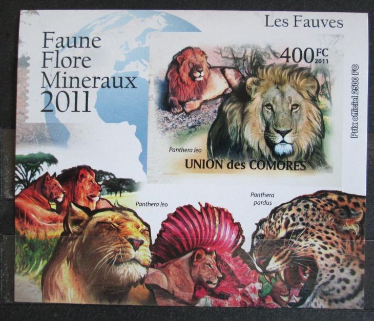 Komory 2011 Kočkovité šelmy neperf. Mi# 3047 B Block 0877 - Filatelie