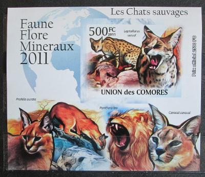 Komory 2011 Kočkovité šelmy neperf. Mi# 3058 B Block 1156