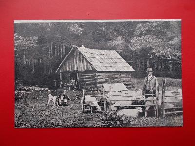 Beskydy Vsetín Rožnov Radhošť salaš ovce bača pastevec pes 1906