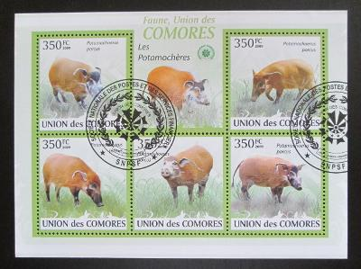 Komory 2009 Štětkoun africký Mi# 2430-34 Kat 9€ 1524