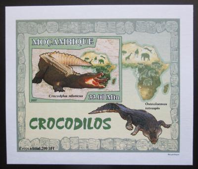Mosambik 2007 Krokodýli DELUXE neperf. Mi# 2987 B Block 1578
