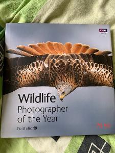 Wildlife photographer of the year 2009