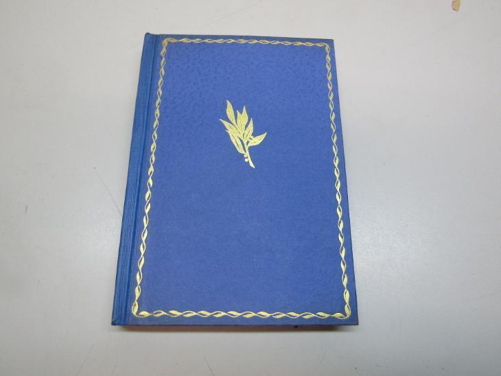 STARÁ KNIHA / F.X. SVOBODA / AŽ LEDY ODPLUJÍ / ROMÁN II. VYDÁNÍ 1924 - Knihy
