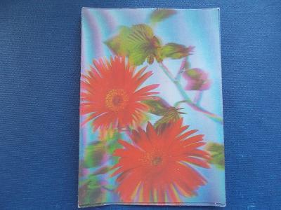 Trojrozměrná pohled měňavá 3 D květy kytice Gerbera Srdečné přání ČSSR