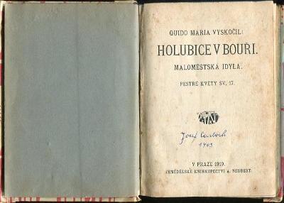Holubice v bouři - Quido Maria Vyskočil - 1919