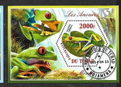 Čad 2014 - Žáby - listovnice červenooká