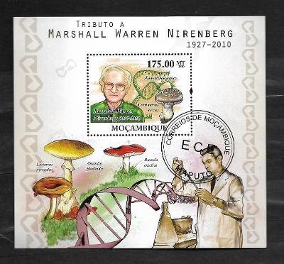 Mosambik 2010-houby-ryzec palčivý, muchomůrka zelená,holubinka vrhavka
