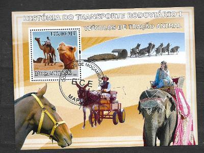 Mosambik 2009 - Doprava I. - velbloud, Husky, kůň, osel, slon