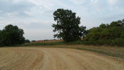 Pozemek Praha-Třeboradice,pole,louka,stromy,vod.plocha