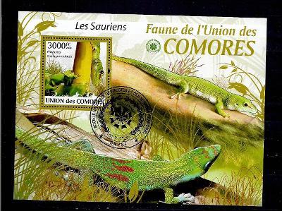 Komory 2009 - ještěrka felsuma madagaskarská