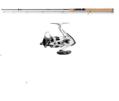 Sada Daiwa Sweepfire spin 2,10 m a naviják Daiwa Sweepfire 1500