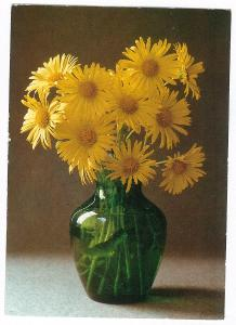 Květina ve váze , prošlá 1991 , známka erb Prostějov