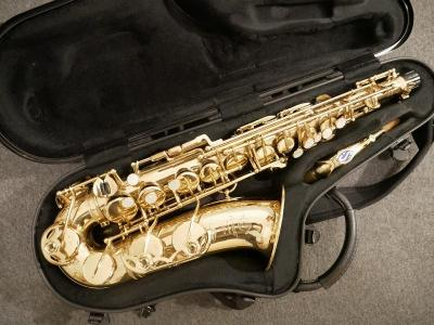 Selmer Mark VI, Alt Saxofon
