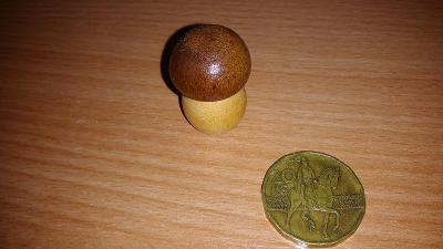 Dřevěný hříbek