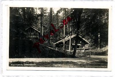 Na Tokáni stromy 1931 Jetřichovice Chřibská Děčín 2616