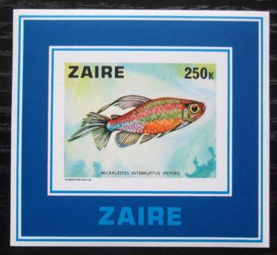 Zair 1978 Tetra konžská neperf. Mi# Block 17 B Kat 30€ 1851