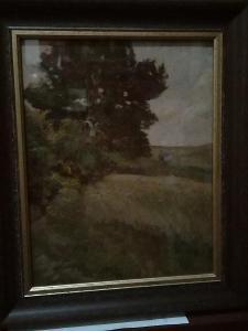 Gustav Macoun-Osamely strom