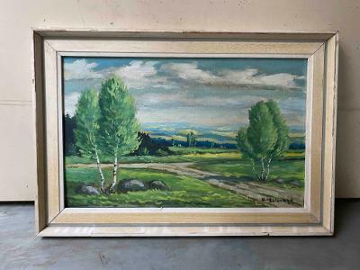 Malovaný obraz v rámu - V.Holoubek
