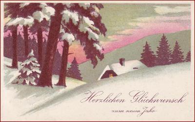 Nový rok * chalupa, stromy, zimní motiv, gratulační * M5030