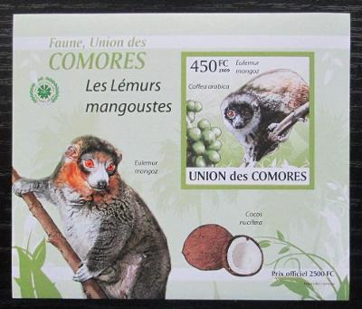 Komory 2009 Lemur DELUXE neperf. Mi# 2461 B Block 1904