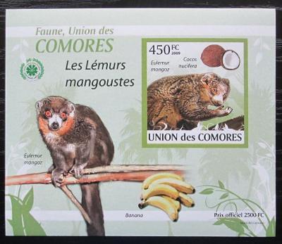Komory 2009 Lemur DELUXE neperf. Mi# 2462 B Block 1904