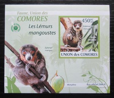 Komory 2009 Lemur DELUXE neperf. Mi# 2463 B Block 1904